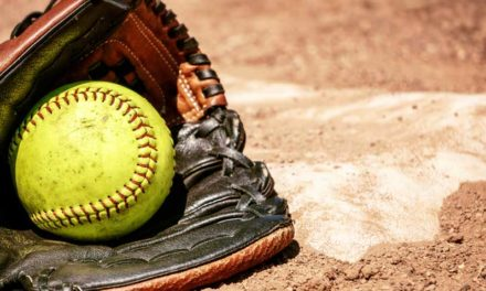 Jackets, Copperheads' softball going to Upper State series
