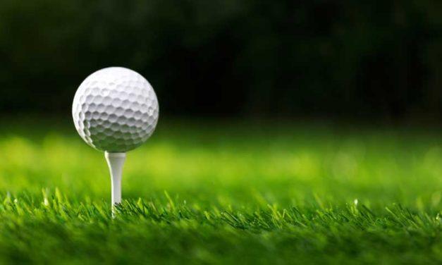 Catawba Ridge golfers tee it up in state championship tournament
