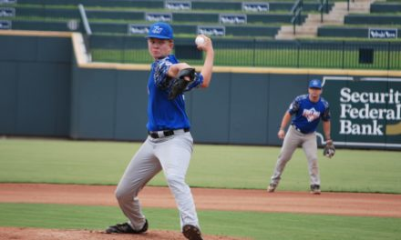 Post 43 knocked out of state tournament by Greer