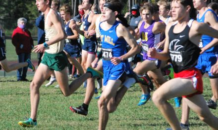 Fort Mill sprints to York County Championship; Falcons, Copperheads finish in top three