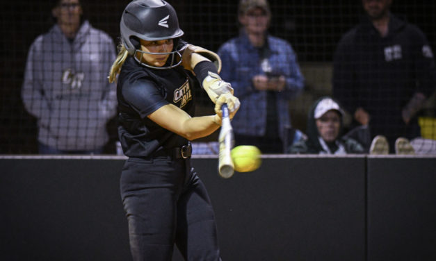 Copperheads' softball puts up impressive win over South Pointe