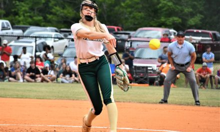 Copperheads drop decisive game three in Upper State series