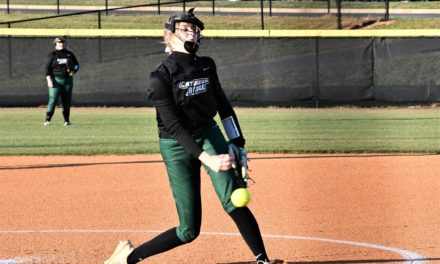 Copperheads' softball clinches playoff spot by dismantling South Pointe