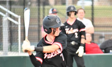 Falcons outlast Copperheads in 11 innings