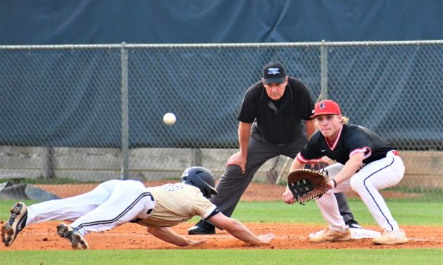 Falcons, Copperheads' baseball seasons come to an end; softball marches on