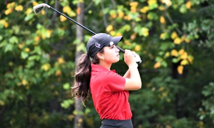 Nation Ford golf tops York on the links